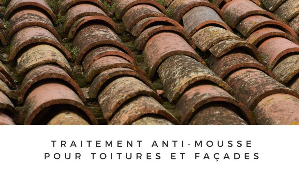 Nettoyage des toitures